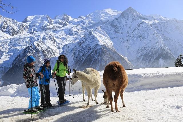 Chamonix Tourism and M Dalmasso