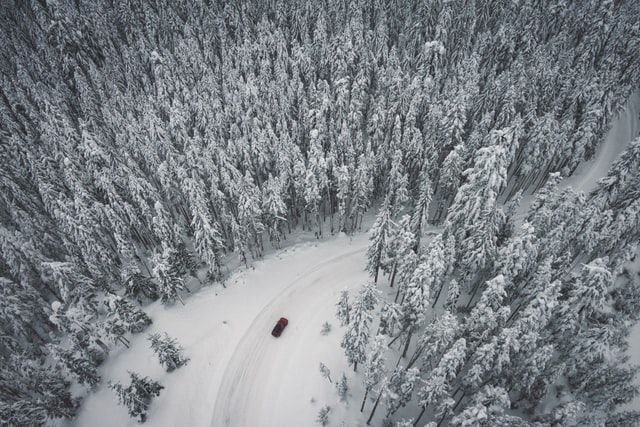 Red car driving through a snowy forest