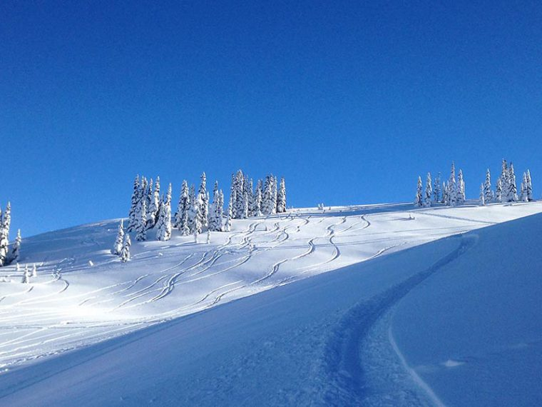Snowy mountain side with fresh skier tracks going down it