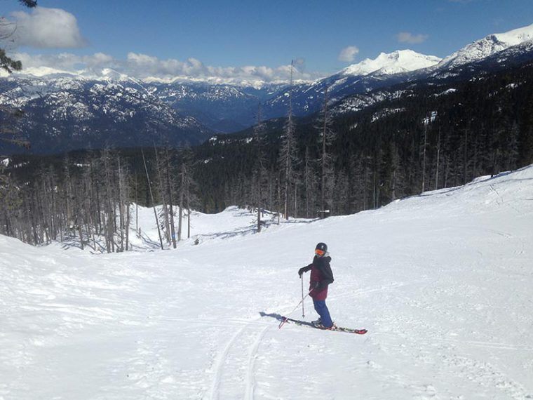 Male skier standing in the middle of a piste with mountains in the background